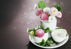 Easter holiday still life with daisies in eggcup Royalty Free Stock Image