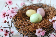 Easter Holiday Themed Still Life Scene in Natural Light Stock Photo