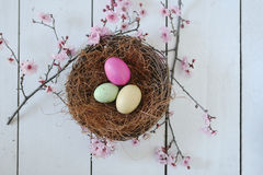 Easter Holiday Themed Still Life Scene in Natural Light Royalty Free Stock Image