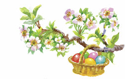 Easter holiday watercolor wicker basket filled with colorful eggs vector illustration Royalty Free Stock Photography