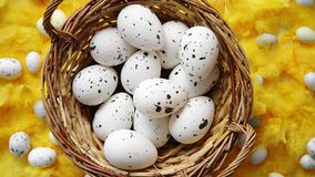 Easter holidays concept. White dotted chicken Eggs in the wicker. Brown nest and spring yellow feather background as a decoration. Flat lay, top view stock video footage