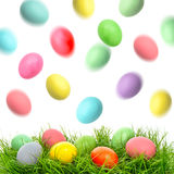 Easter holidays decoration. Colored eggs in green grass Royalty Free Stock Photo