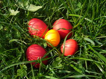 Easter holidays eggs Stock Photography