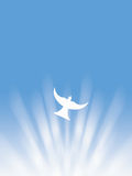 Easter holy spirit peace white dove flying through sun rays illustration. With blue background Royalty Free Stock Photo