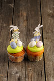 Easter homemade cupcakes Royalty Free Stock Image