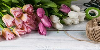 Easter horizontal banner. Multicolored tulips on a horizontal wooden background. Multicolored tulips on a horizontal wooden background. Easter horizontal banner stock image