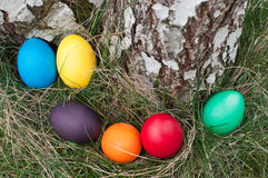 Easter hunt Royalty Free Stock Photography