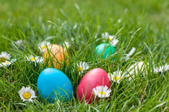 Easter Hunt Royalty Free Stock Image