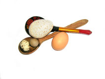 Easter illustration: wood spoons and exotic eggs Royalty Free Stock Photo