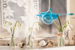 Easter interior with snowdrops and quail eggs Royalty Free Stock Photos