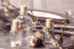Easter interior with vials and quail eggs Stock Photo