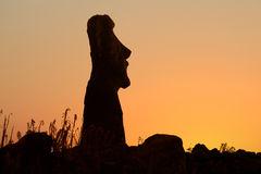 Easter island Stock Images