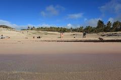 Easter Island Beach Anakena royalty free stock photos