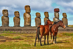 Easter Island horses Stock Photography