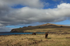 Easter Island Landscape Royalty Free Stock Photography