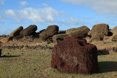 Easter Island Moai Statue. Moai Statue at Easter Island Stock Images