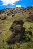Easter Island Moai. Moai Stone Statues at Rapa Nui Stock Photography