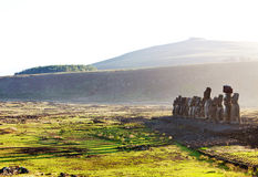 Easter Island statues in morning light Royalty Free Stock Photo