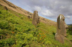 Easter Island Statues - Rano Raraku. Moai (stone statues) at Rano Raraku on Easter Island stock photography