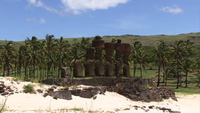 Easter Island statues zoom out with palm trees in background. Easter island statues zoom out stock video
