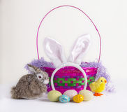 Easter Items Royalty Free Stock Images