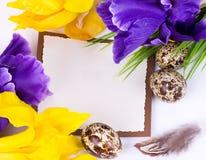 easter jajek kwiatów przepiórki wiosna Obraz Stock