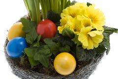 easter jajek kwiatów wiosna Obraz Stock