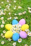 easter jajek kwiatu trawa Zdjęcie Royalty Free