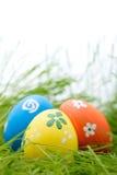 easter jajek trawa chująca Obrazy Stock