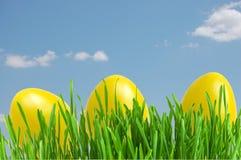 easter jajek trawy zieleni kolor żółty Obraz Royalty Free