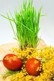 easter jajek trawy zieleni obraz Fotografia Stock