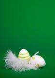 easter jajka piórka gniazdują biel zdjęcia stock