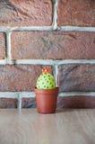 easter jajka wizerunek robić zielony życia ilustracji sklepu smellcomp kwiat wielkanoc szczęśliwy Naturalny barwidło Jajeczny pol zdjęcia stock