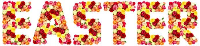 easter kwiat pisze list róże zdjęcia royalty free