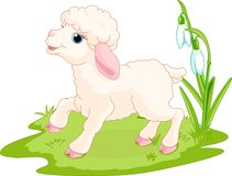 Easter lamb royalty free illustration