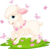 Easter lamb and butterflies Stock Photo