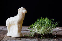 Easter lamb, cress and palm tree Royalty Free Stock Image
