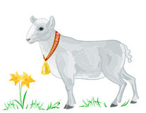Easter lamb. With golden bells on the grass with daffodils Royalty Free Stock Photography