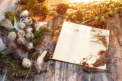 Easter letter decorated with quail eggs , gnezom , moss , feathers , pine cones and twigs of willow on wooden background Stock Image