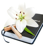 Easter Lily and Bible. On a white background Stock Photo