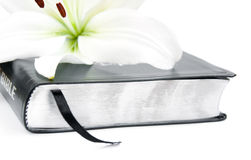 Easter Lily and Bible Stock Image
