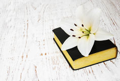 Easter lily and bible. On a old wooden background Stock Photos