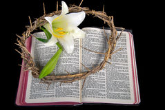 Easter lily with crown of thorns on Bible Royalty Free Stock Images