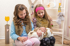 Easter - Little girls stroking the huge, live bunny stock photo