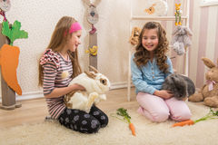 Easter - Little girls stroking the rabbits, hand beets . Royalty Free Stock Images