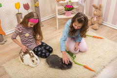 Easter - Little girls stroking the rabbits, hand beets Royalty Free Stock Photos
