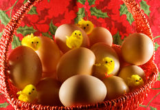 Easter: Little Yellow Chickens And Simple Eggs Royalty Free Stock Photo