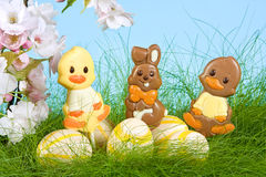 Easter lollies. Three chocolate easter lollies under spring blossoms Stock Photo