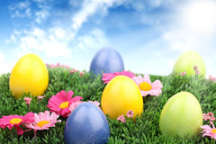 Easter meadow 1 Royalty Free Stock Images