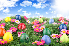 Easter meadow 2 Royalty Free Stock Photos